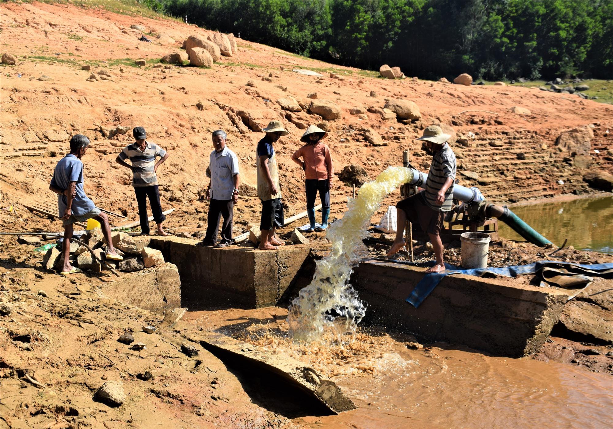 Cán bộ nông nghiệp hút nước còn lại trong hồ thủy lợi Hố Lau để cứu lúa. Ảnh: THANH THẮNG