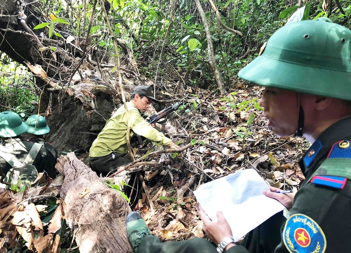 Survey to open the tour of forest protection