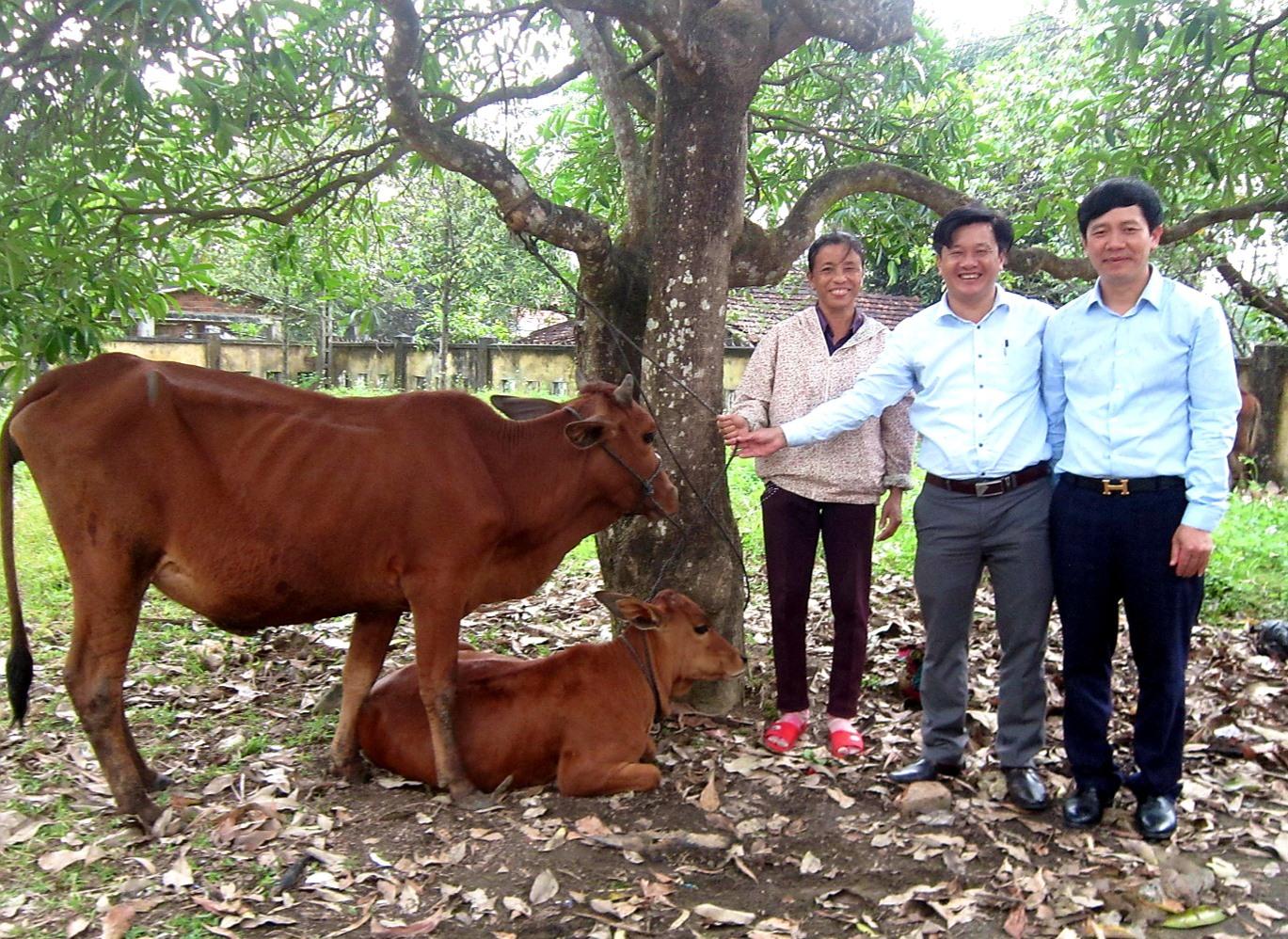 Lãnh đạo Ủy ban MTTQ Việt Nam huyện Quế Sơn tặng bò cho hộ nghèo ở xã Quế Minh. Ảnh: T.C
