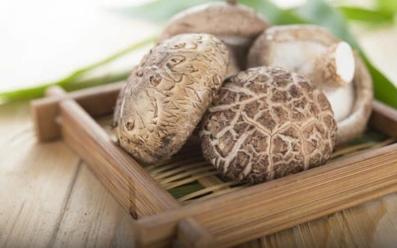 Ăn nấm thảo dược: Một số sản phẩm nấm như nấm đông cô, nấm maitake... giúp tăng khả năng miễn dịch, giúp ngăn ngừa ung thu vú./.