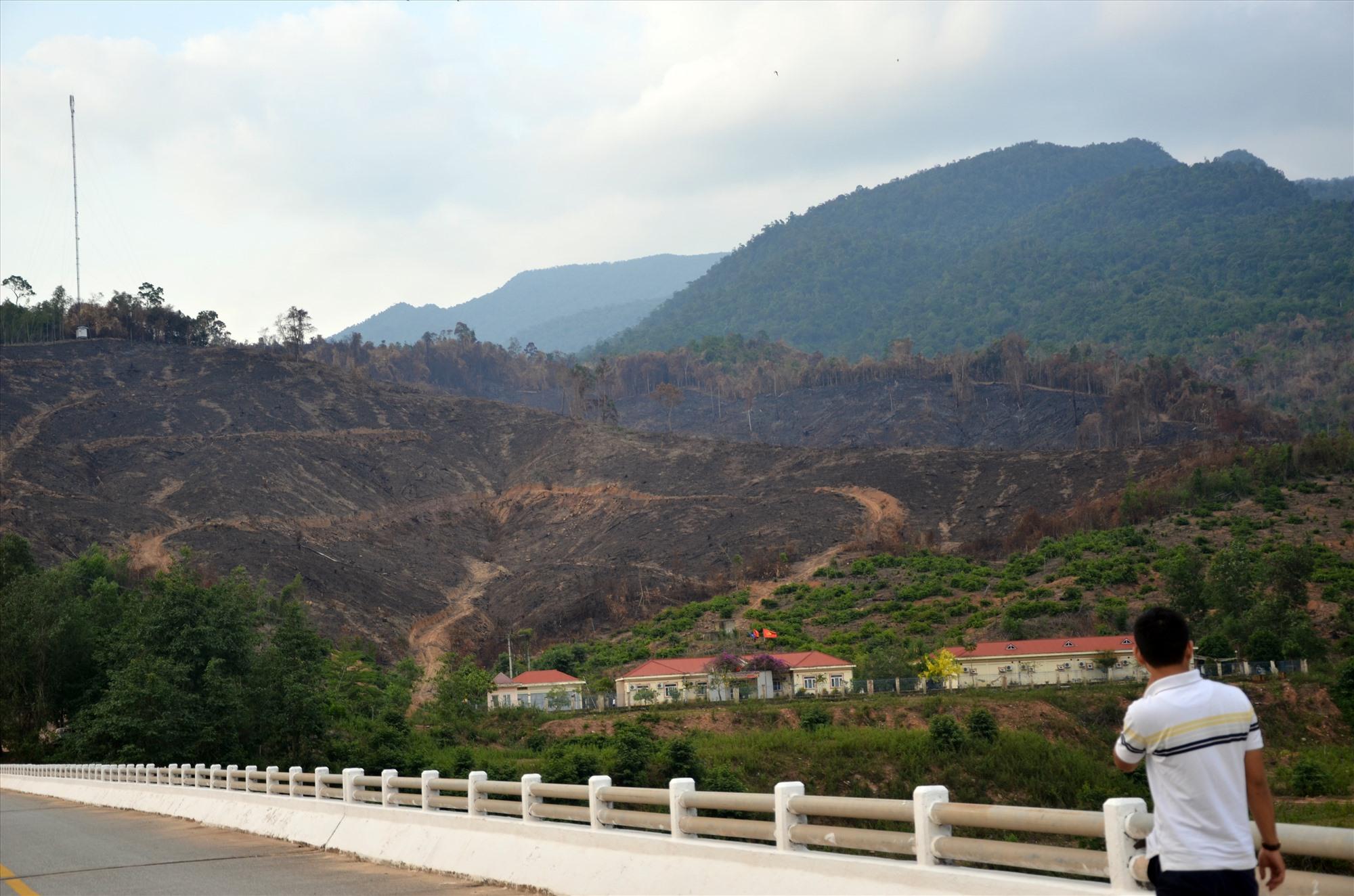 Vụ cháy rừng ở xã Mà Cooih (Đông Giang) vừa qua gây thiệt hại hơn 30ha. Ảnh: H.P