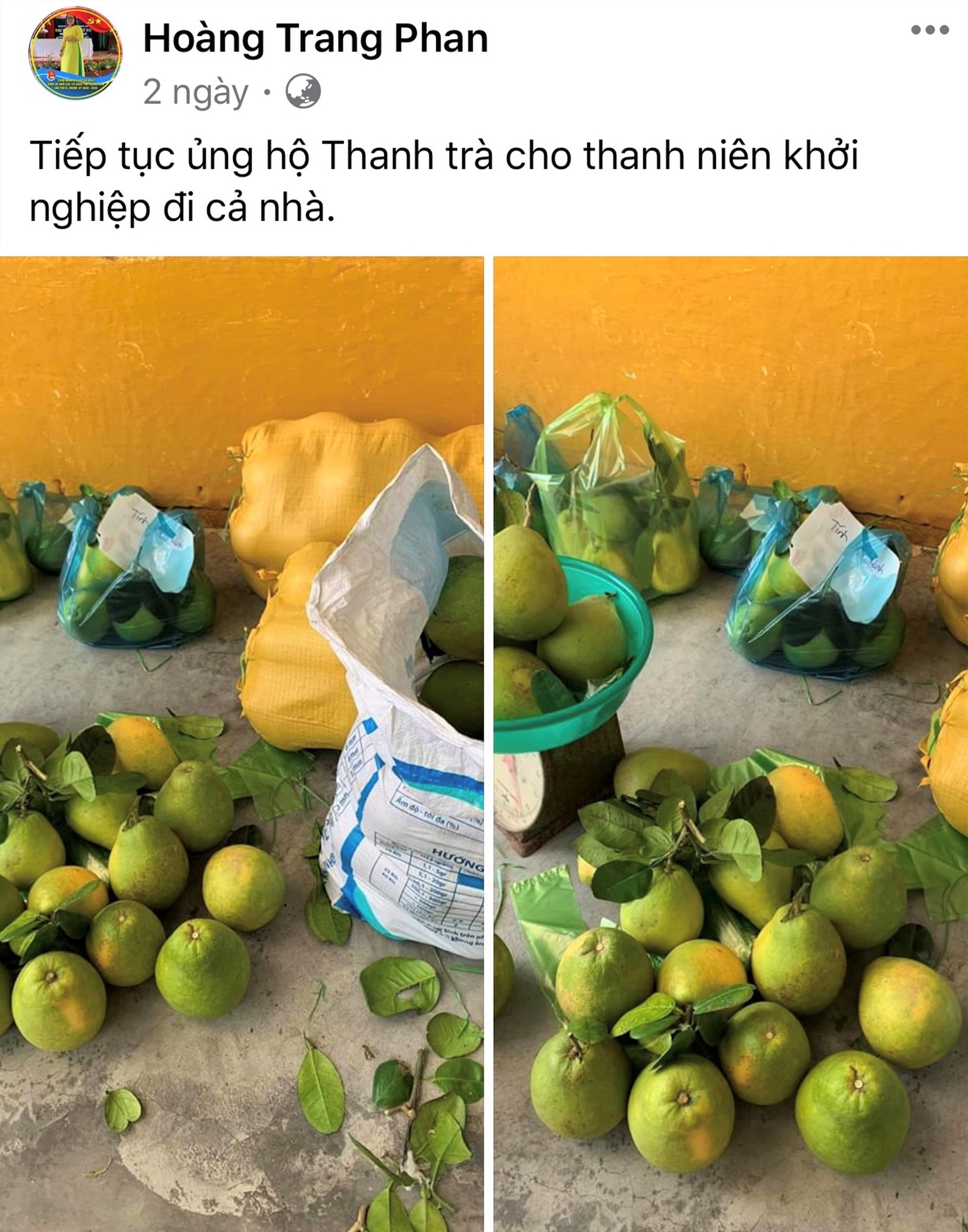 Chị Phan Thị Hoàng Trang, chuyên viên Ban Thanh niên nông thôn, công nhân và đô thị Tỉnh đoàn đăng bán thanh trà giúp anh Nguyễn Ngọc Huy trên trang cá nhân facebook. Ảnh: VINH ANH