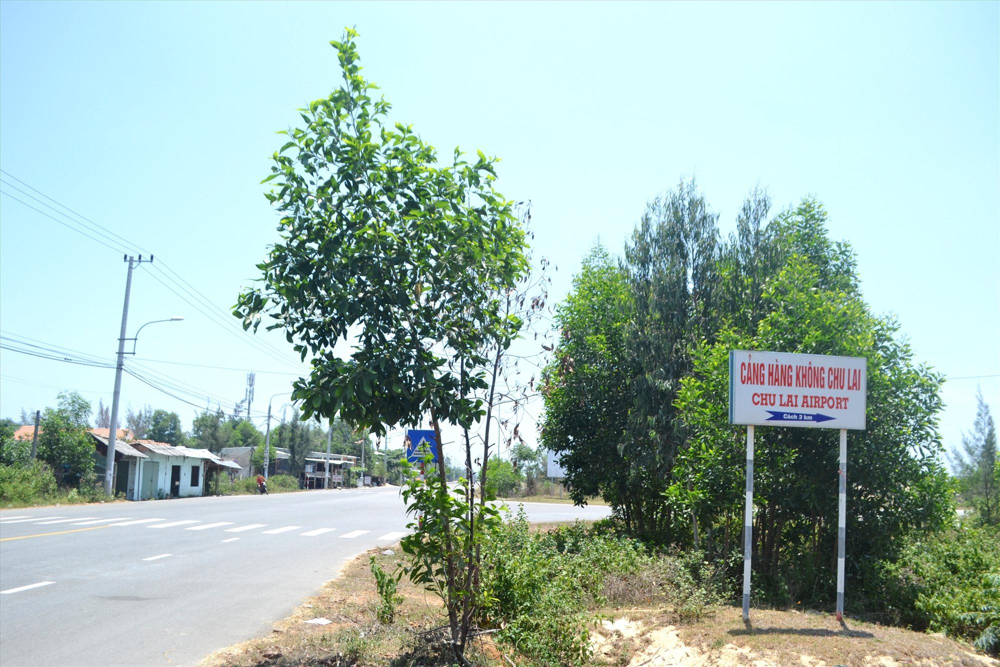 Đoạn cuối tuyến giao với đường vào sân bay Chu Lai cũng chưa có mặt bằng thi công. Ảnh: CT