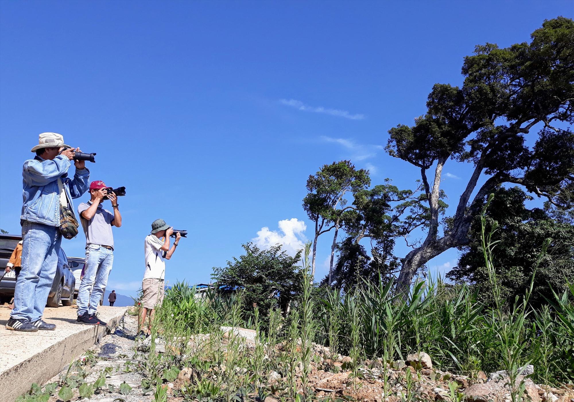 Các hội viên nhiếp ảnh tác nghiệp trong một đợt trại sáng tác chuyên đề ở huyện Nam Trà My. Ảnh: B.A