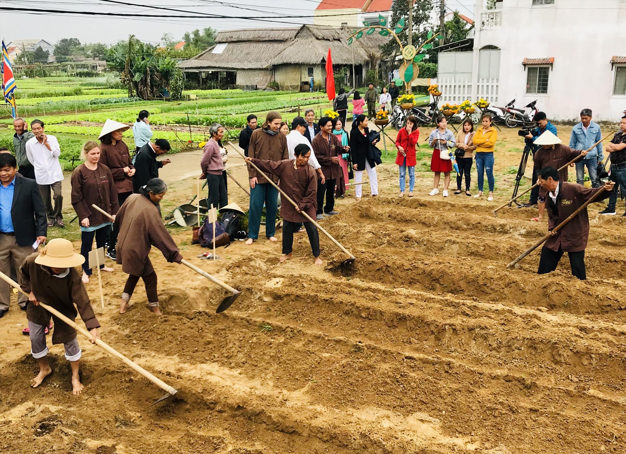 Nông nghiệp đô thị sẽ nâng cao giá trị nhiều lần nếu kết hợp cùng phát triển du lịch.