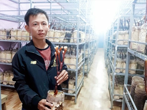 Nguyen Huu Nghia at his mushroom farm