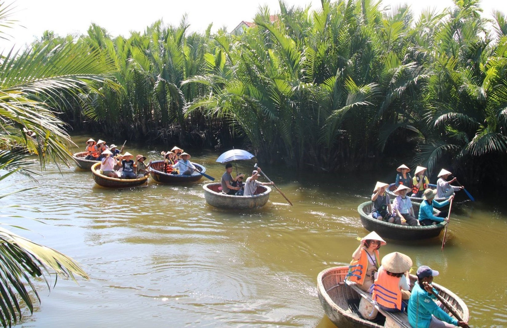 Earlier, Bay Mau nipa palm forest attracts from 3,000 to 4,000 visitors a day.
