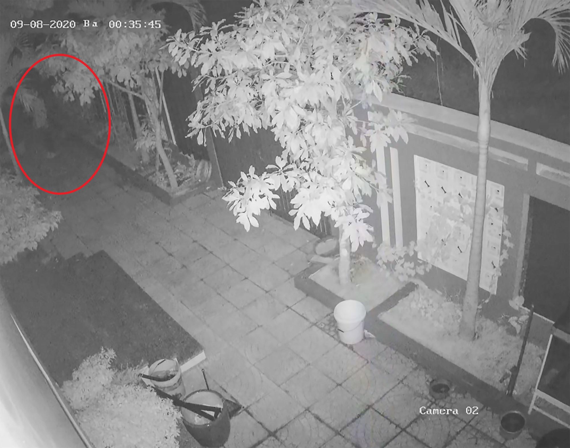 Một đối tượng đột nhập vào sân nhà anh Hoàng Thanh Trông lúc 0h35'. Phát hiện camera an ninh, đối tượng lẫn tránh, tìm cách lẻn vào nhà trộm cắp tài sản. Ảnh: NVCC