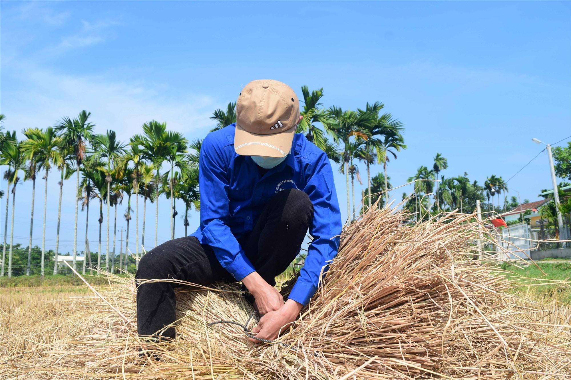 Các bạn tham gia hoạt động đều là con nhà nông nên thành thạo kỹ năng. Ảnh: THÁI CƯỜNG
