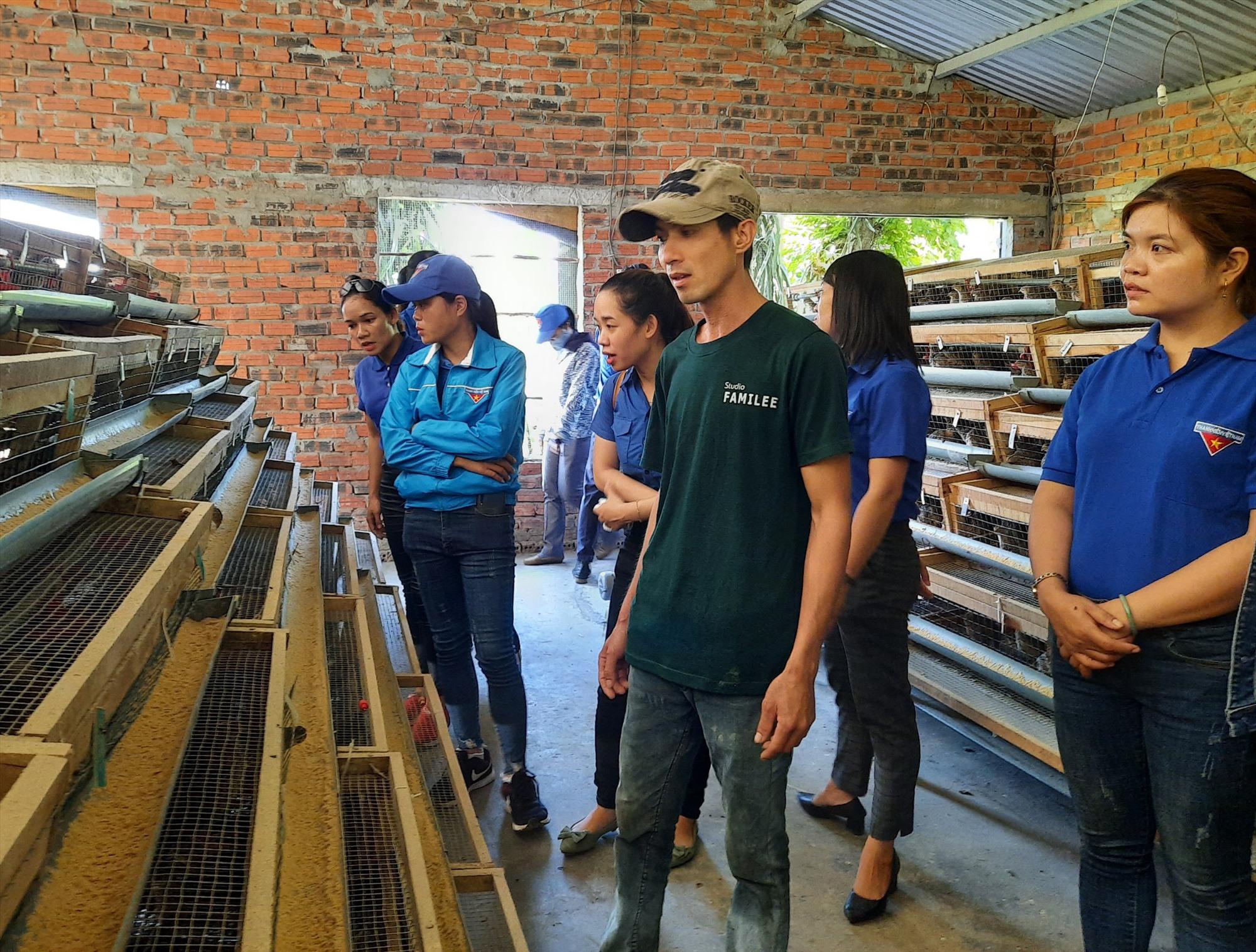 Đoàn thanh niên xã Quế Thọ tổ chức tham quan mô hình nuôi chim cút của ông Nguyễn Hải Sơn. Ảnh: TÌNH CHUNG