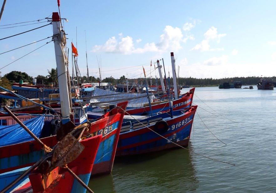 Ngư dân khu vực phía nam của tỉnh bố trí tàu cá trong khu neo đậu tàu cá An Hòa. Ảnh: VIỆT NGUYỄN