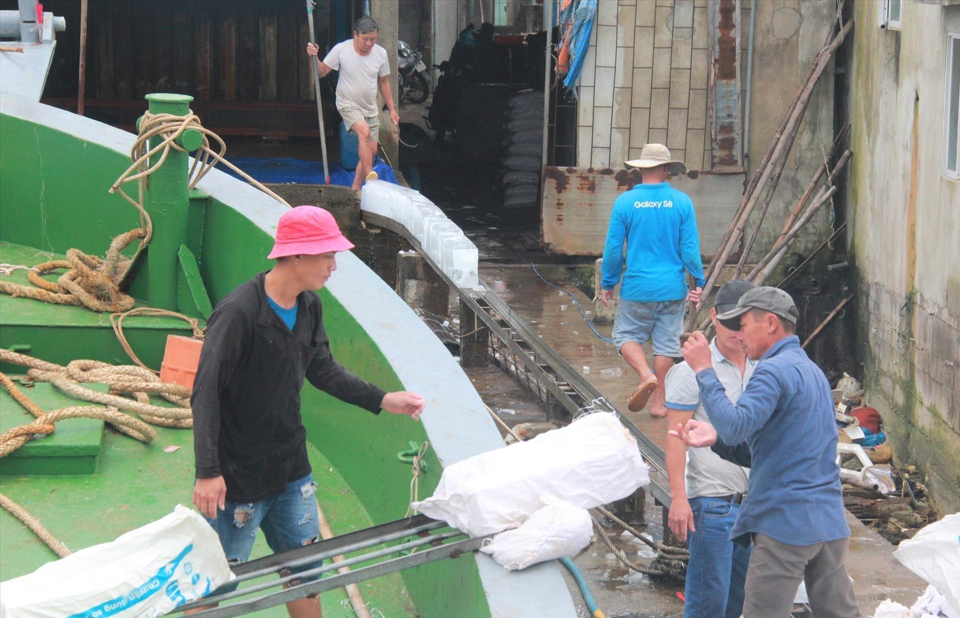 Ngư dân chuẩn bị đá lạnh trước khi vươn khơi