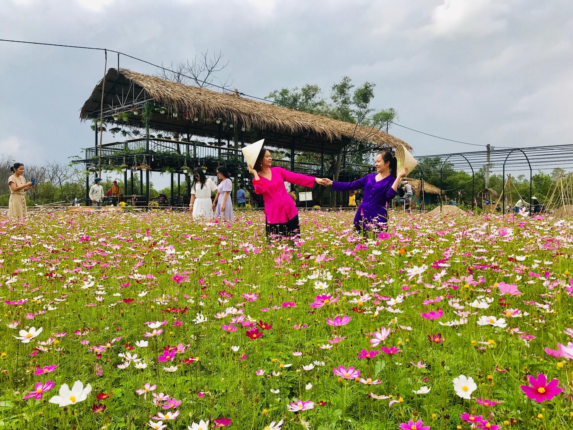 Flower field in Dien Phuong Riverside Village Thuan Tinh