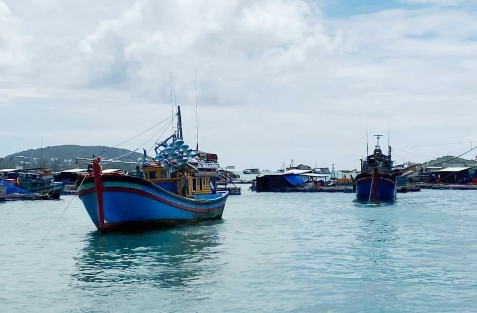 Marine economy plays an important role in Quang Nam.