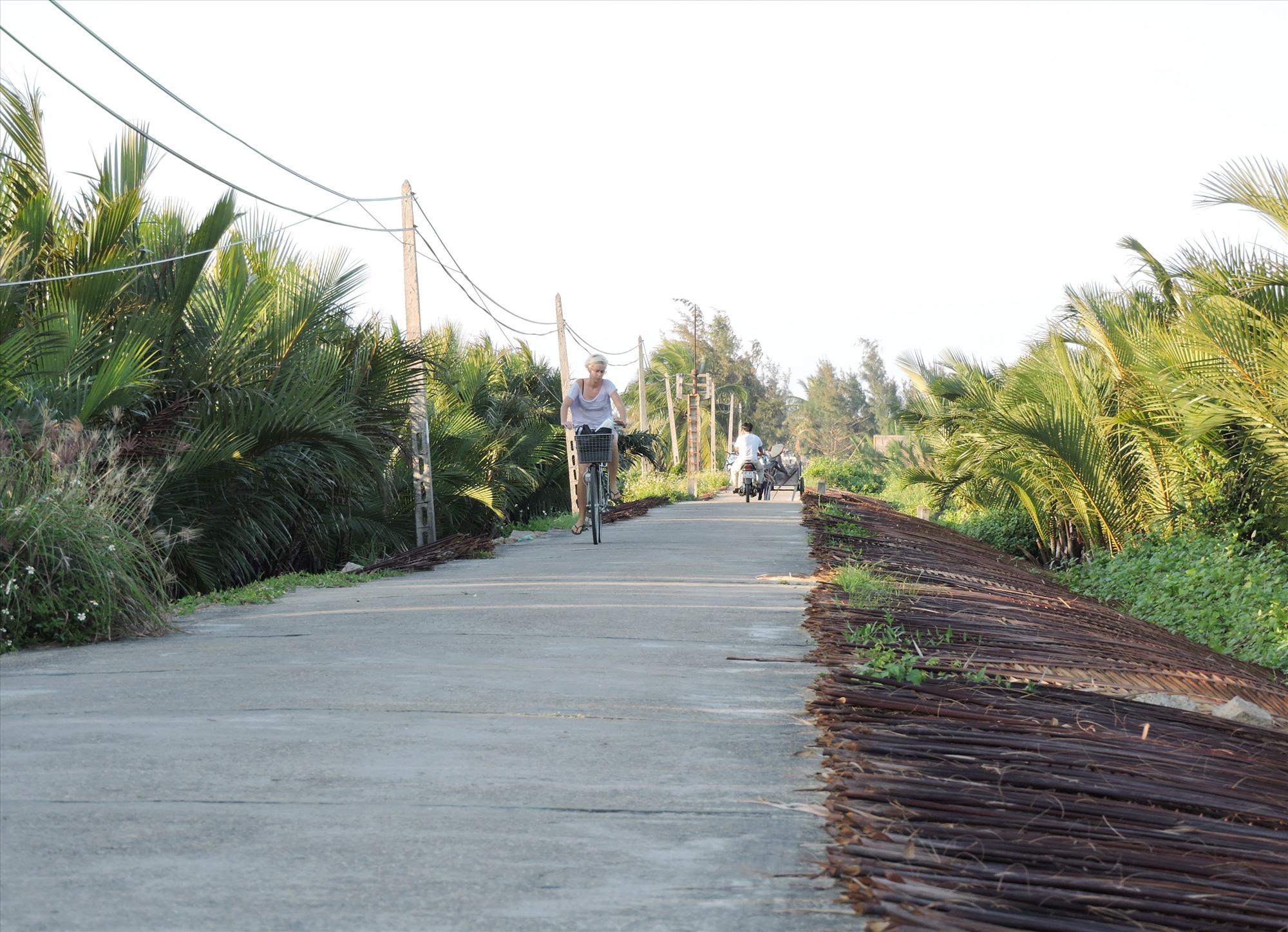 Bình yên vùng dừa nước Cẩm Thanh. Ảnh: P.T.T.L