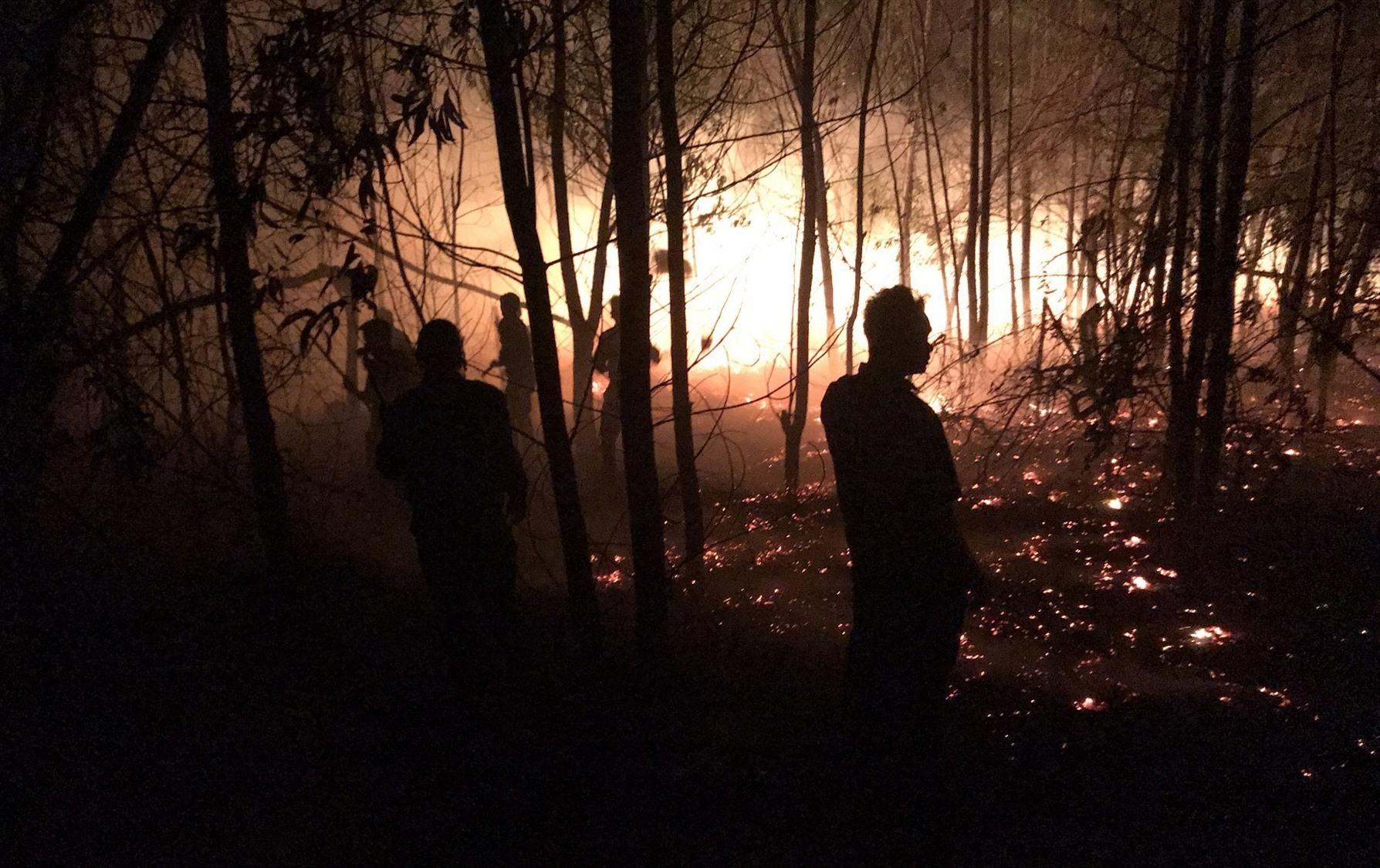 Khu vực rừng trồng xã Bình Minh, huyện Thăng Bình bị cháy. Ảnh: HOÀI AN