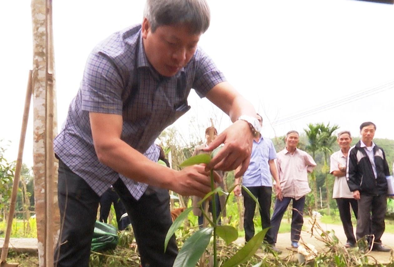 Đồng chí Hồ Quang Bửu đi thăm, khảo sát một số vườn măng cụt trên địa bàn xã Tiên Mỹ.
