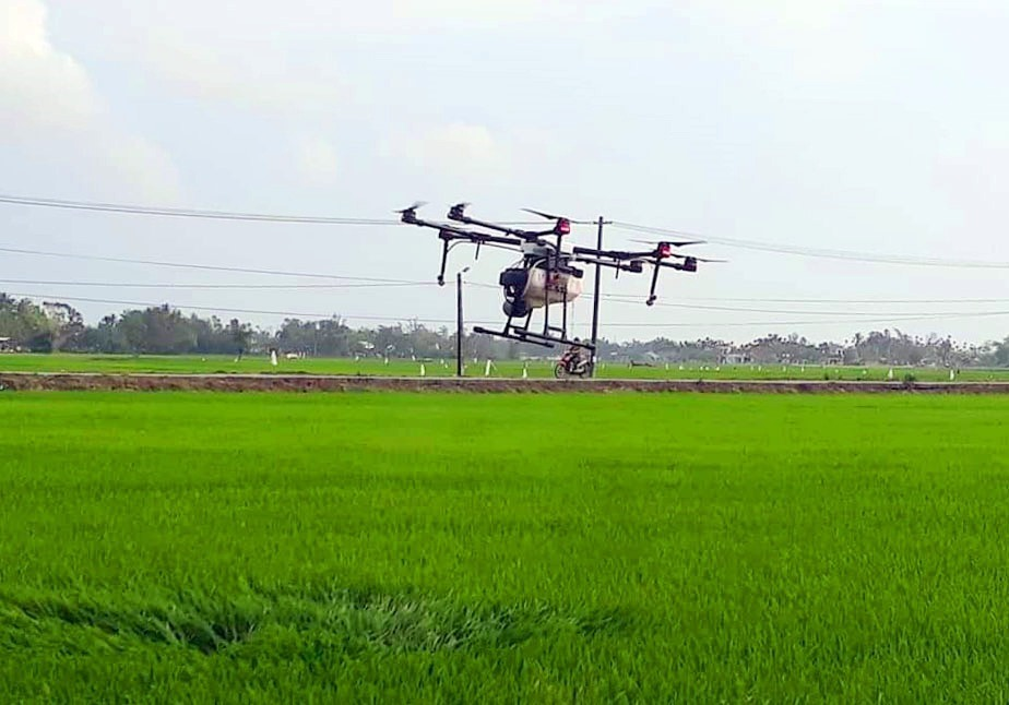 A drone is spraying pesticide on a paddy field in Phu Nam hamlet, Tam Xuan 2 commune, Nui Thanh district, Quang Nam province.