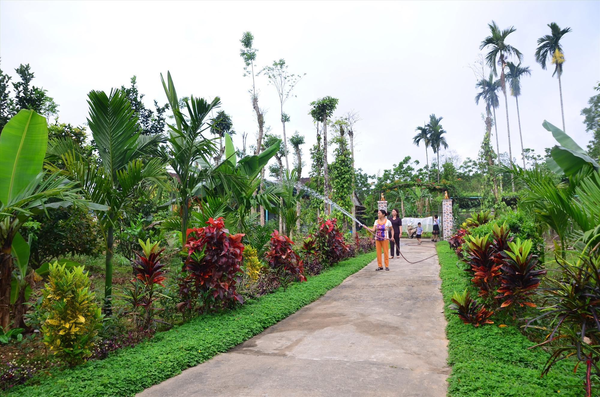 """Mô hình """"Nhà sạch, vườn đẹp"""" của bà Phan Thị Để tại thôn 4, xã Tiên Lập (Tiên Phước). Ảnh: HOÀNG HƯNG"""