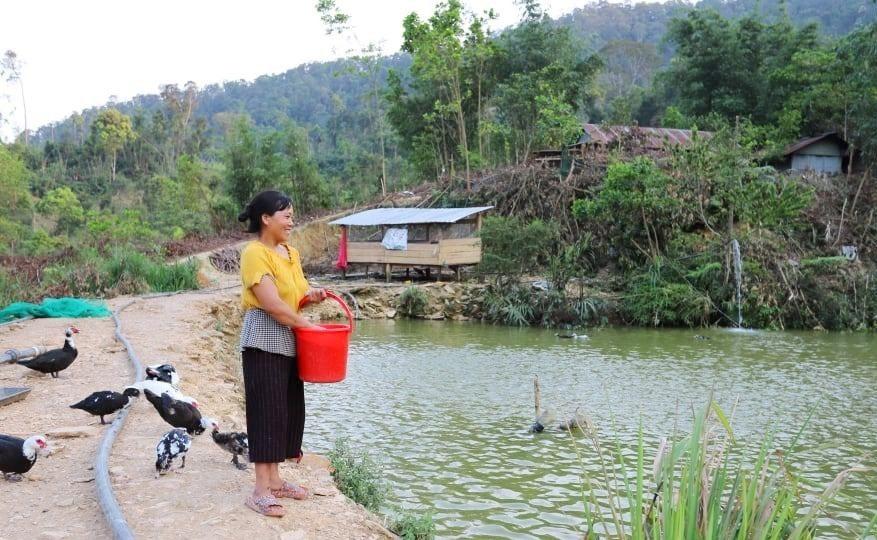 Ngoài chăn nuôi vịt, chị Bling Thị Vấp đào ao nuôi cá