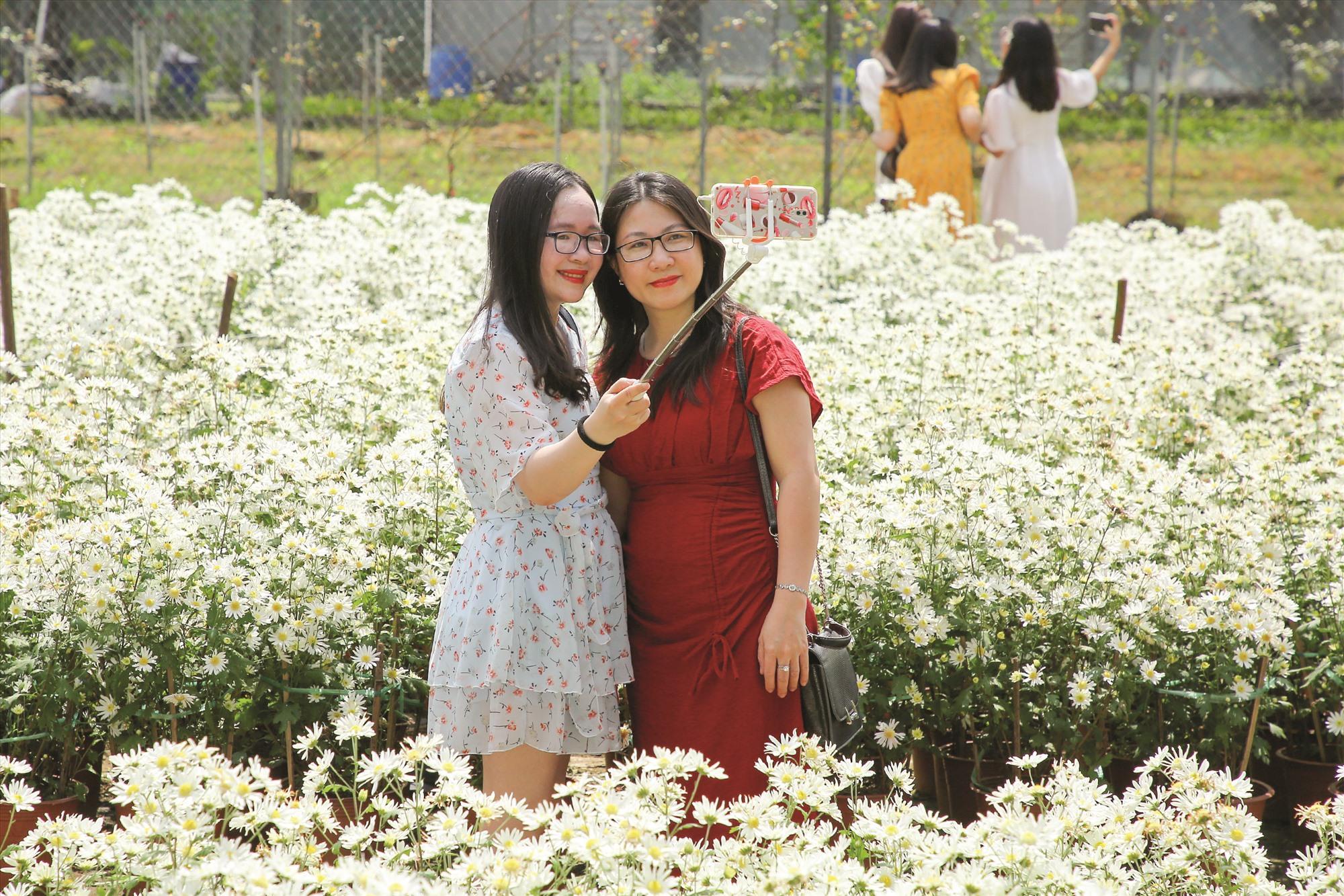 Trung tâm Công nghệ sinh học Đà Nẵng cho biết việc thử nghiệm hoa nở trái mùa sẽ giúp địa phương có thể nhân rộng giống cây này để phục vụ du lịch.