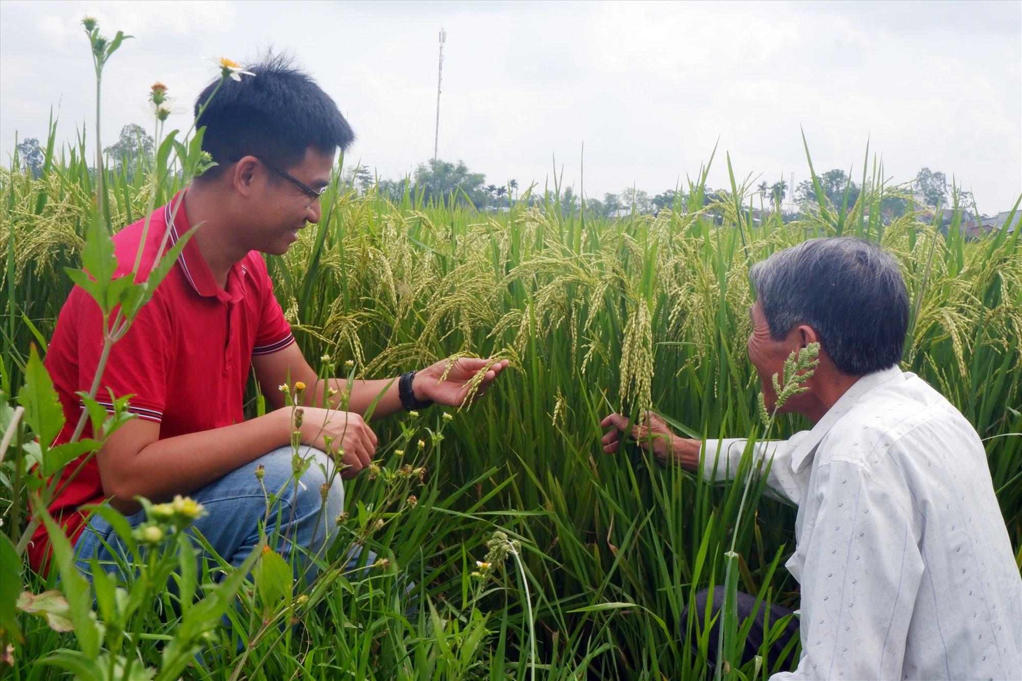 Sự kết nối giữa người trẻ và già sẽ tạo nên sức bật cho vùng quê Gò Nổi.Ảnh: HIỀN TUẤN