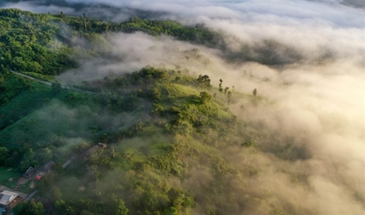 The forest over the mountainous district of Pa Nang, Quang Tri province, central Vietnam