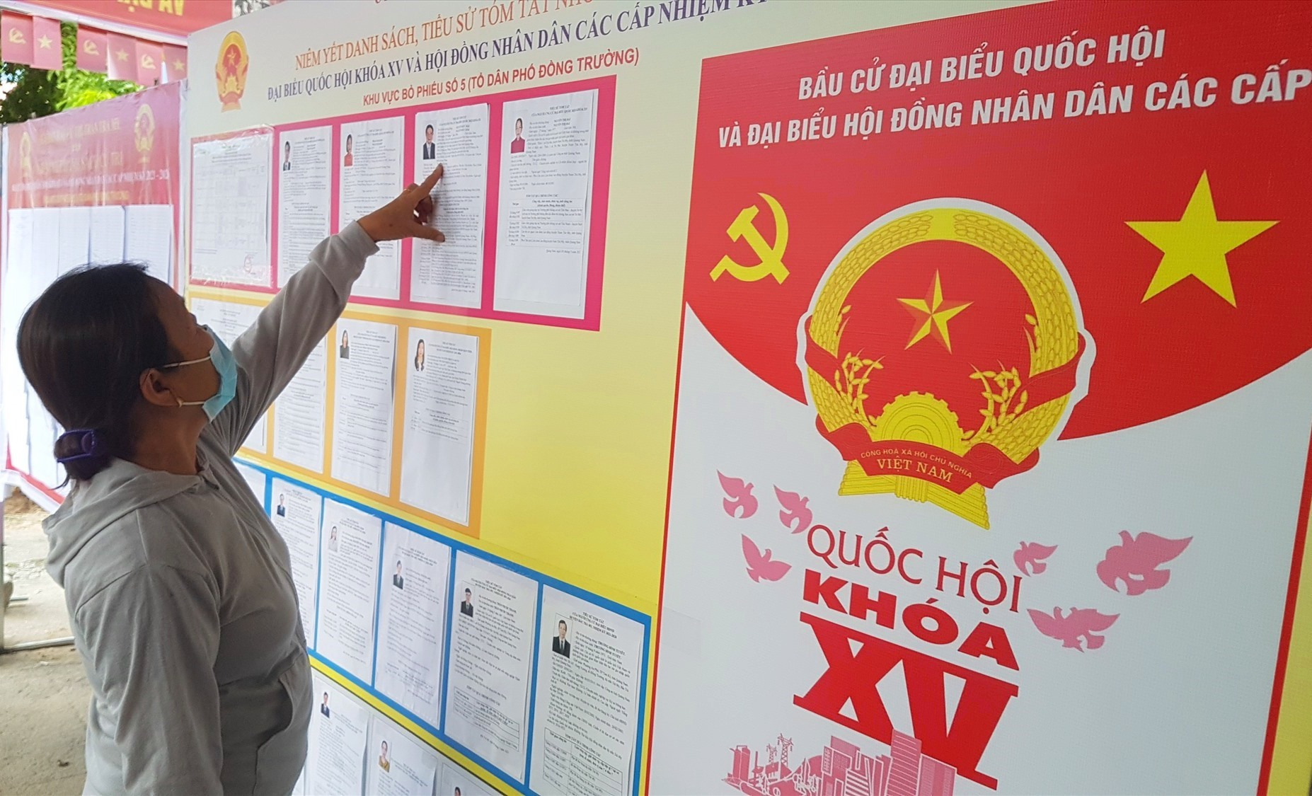 Cử tri tìm hiểu thông tin ứng cử viên được niêm yết tại khu vực bỏ phiếu bầu cử. Ảnh: D.L