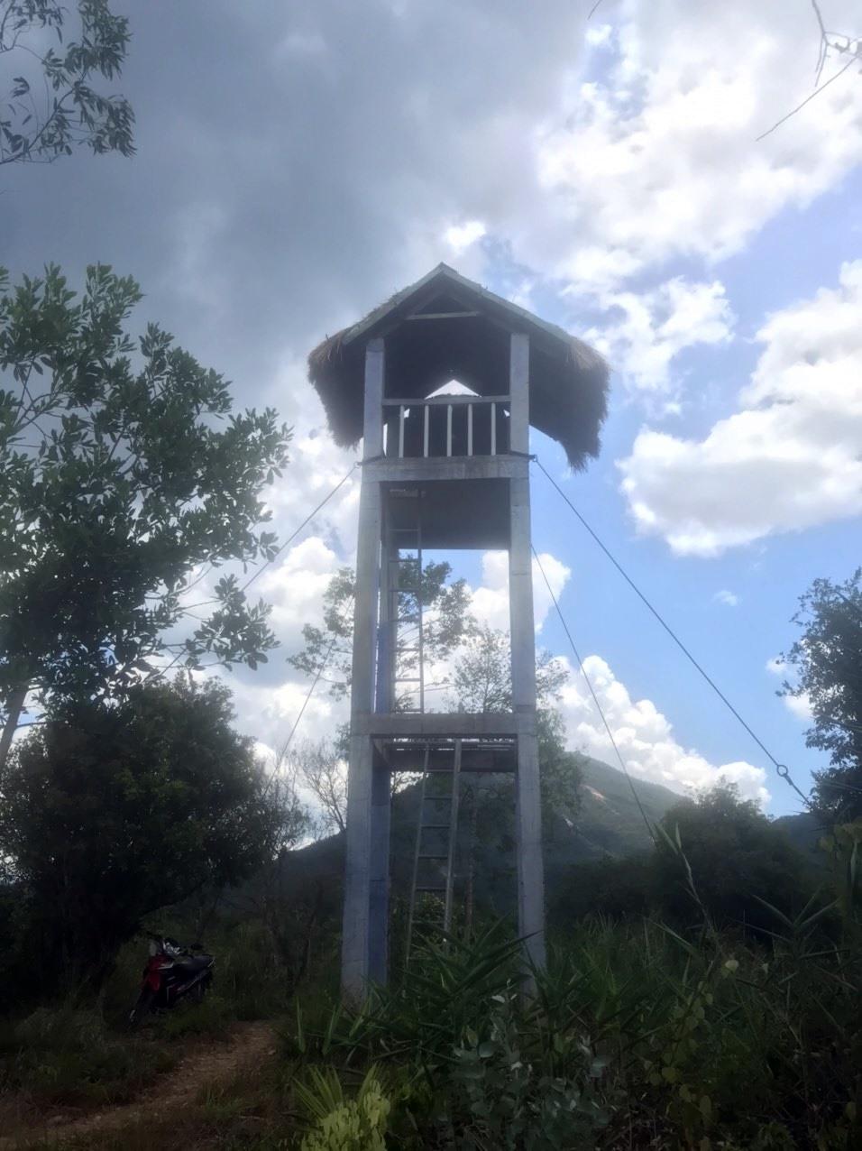 Tháp quan sát cháy rừng ở Mỹ Sơn