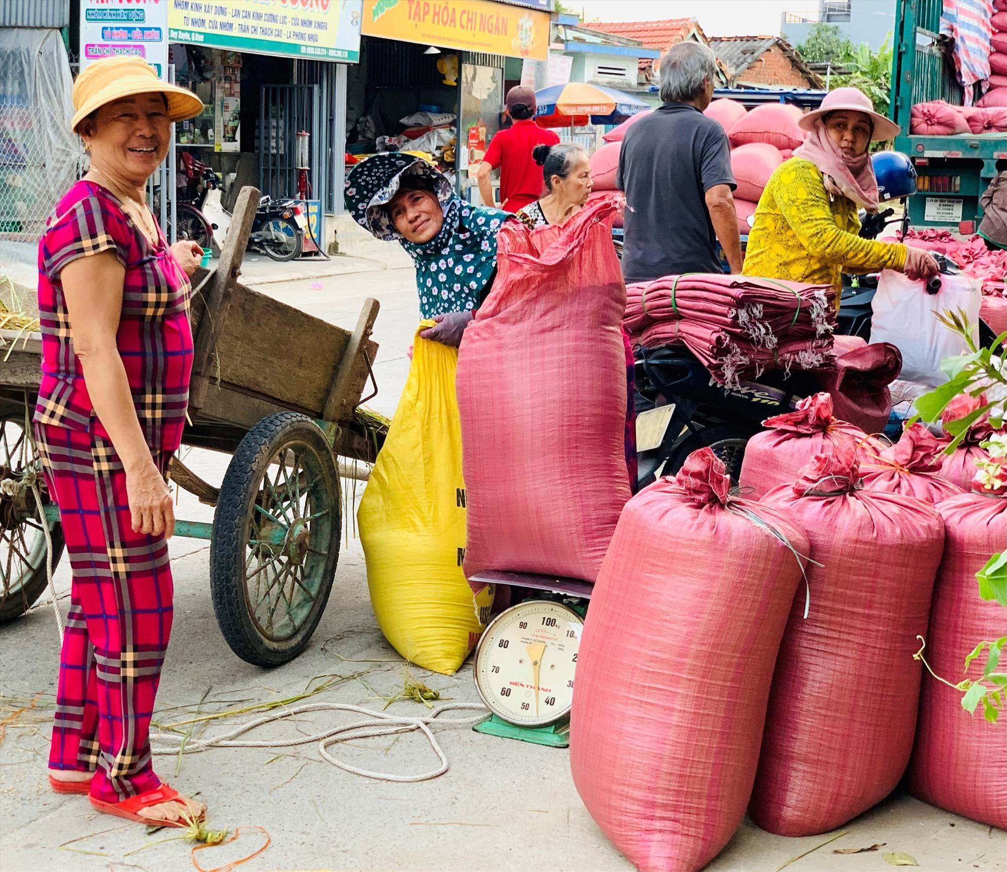 Nông dân Duy Thành cân nếp bán cho các doanh nghiệp và tư thương.    Ảnh: T.S