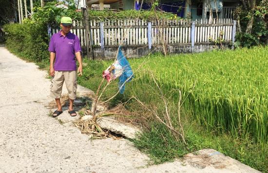 Người dân lấy nhánh cây làm dấu để cảnh cáo cho người đi đường. Ảnh: PHAN VINH