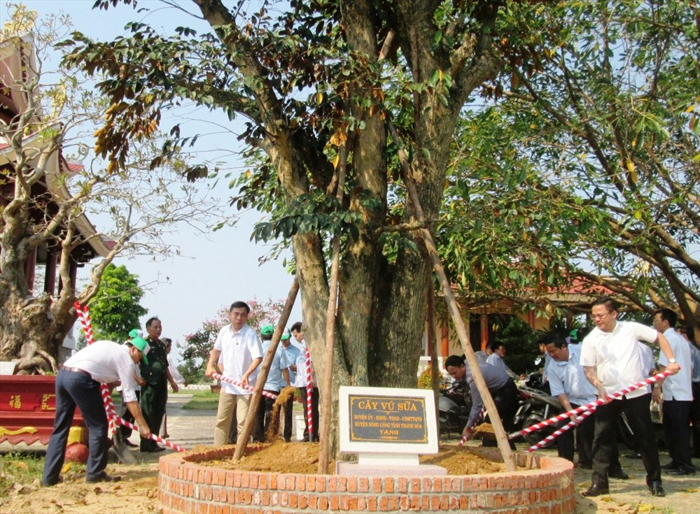 Lãnh đạo huyện Nông Cống trồng cây lưu niệm tại Đền liệt sĩ huyện Duy Xuyên. Ảnh: HOÀI NHI