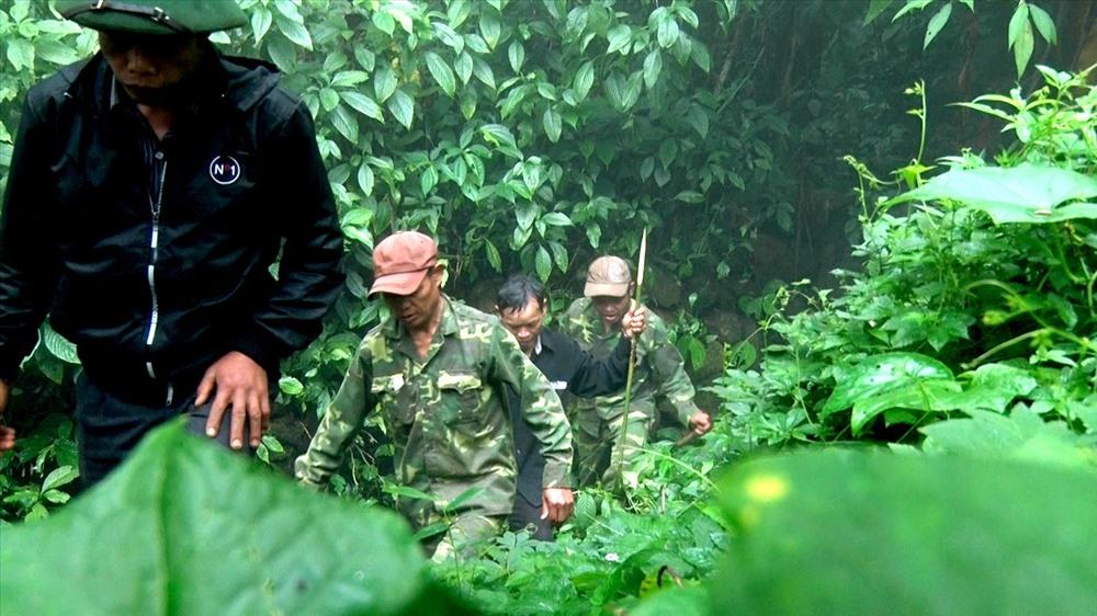 Những chốt trồng sâm của đồng bào Xê Đăng trên rừng nguyên sinh đỉnh Ngọc Linh, phải đi nhiều giờ mới tới nơi…