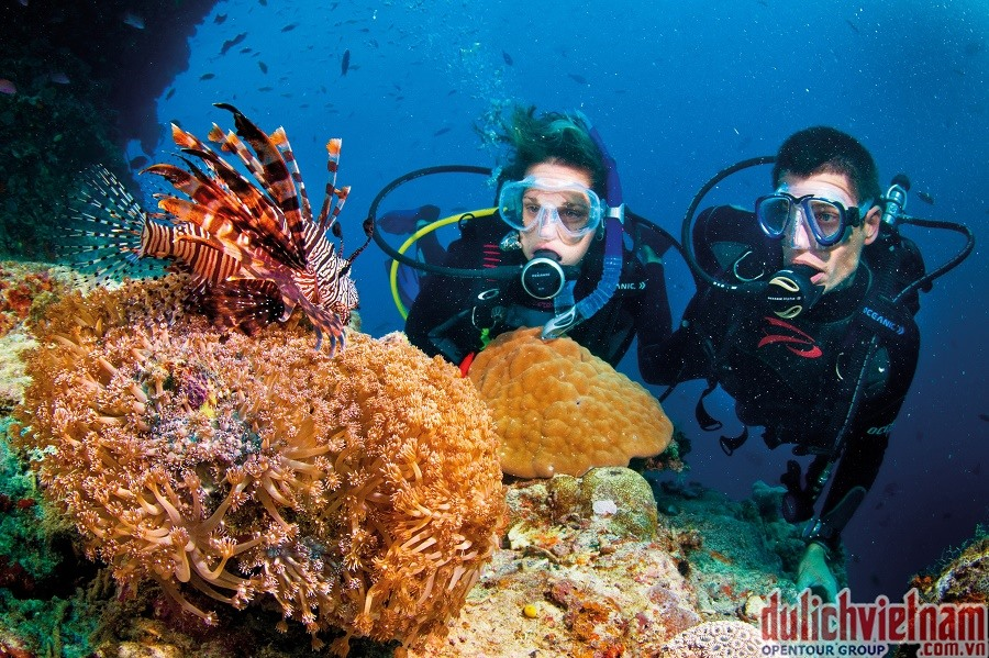 Tourists are divivng in Mui Da Trang- a heaven under the sea bottom in Cham Islands