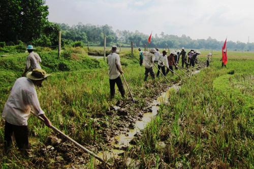 Nhiều nơi tích cực dồn điền đổi thửa để nhân rộng mô hình cánh đồng mẫu lớn.