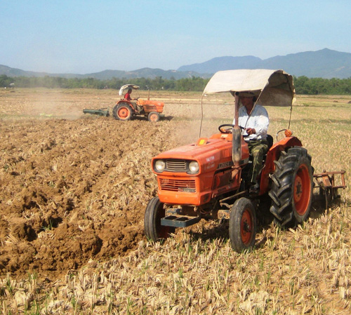 Tại các cánh đồng mẫu lớn, việc cơ giới hóa khâu làm đất diễn ra rất thuận lợi.