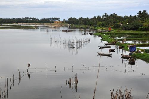 Vùng đông Tam Kỳ, đoạn sông Trường Giang chảy qua xã Tam Thanh.