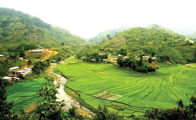 Vẻ đẹp của ruộng bậc thang Chuôr ở xã A Xan, Tây Giang. Ảnh: Phương Giang