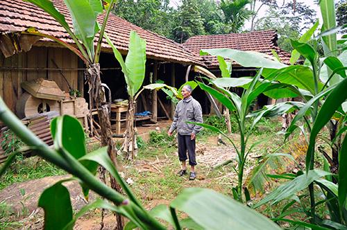 Ngày trước, căn nhà này của ông Mịch hơn 40 lần bị địch đốt phá.