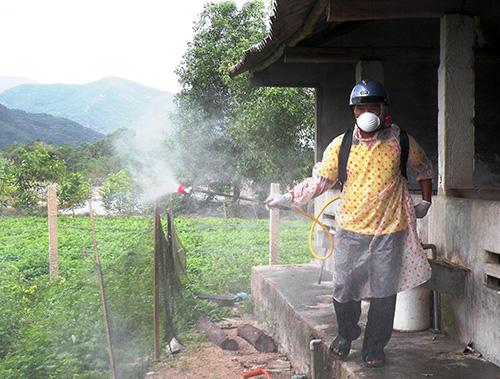 Phun hóa chất khử trùng, tiêu độc vẫn là biện pháp phòng chống dịch chủ yếu. Ảnh: V.SỰ