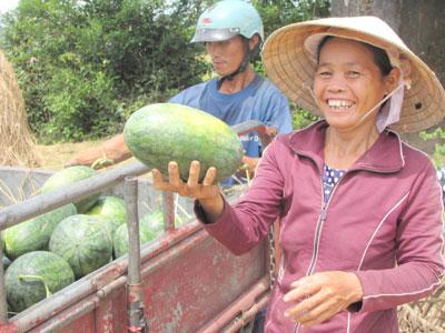Happy smile for a good VietGAP watermelon harvest.