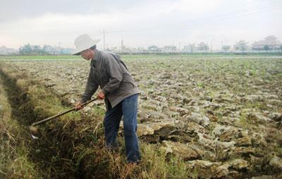 Cần nạo vét kênh mương trên các địa bàn lưu vực sông Vu Gia - Thu Bồn để chủ động chống hạn.                                                                                                                                Ảnh: N.DƯƠNG