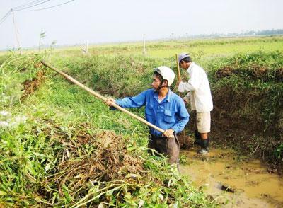 Trước khi vào vụ hè thu 2013, nông dân Đại Lộc đã ra quân nạo vét nhiều tuyến kênh mương chính và nội đồng.  Ảnh: ĐOÀN Đạo