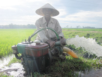 Nông dân vùng trung huyện Quế Sơn đang tận dụng mọi nguồn nước để cứu lúa. Ảnh: VĂN SỰ