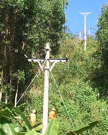Công nhân Điện lực Đông Giang kiểm tra hành lang an toàn lưới điện.Ảnh: N.TRIỀU