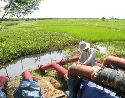 Lắp đặt máy bơm dã chiến tại khu vực Cầu Thấn (xã Duy Phước) để bơm nước ngọt lên hòa với nước mặn.Ảnh: VĂN SỰ