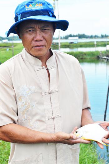 Ông Nguyễn Hùng và mô hình nuôi cá chim biển vây vàng. Ảnh: N.Q.V