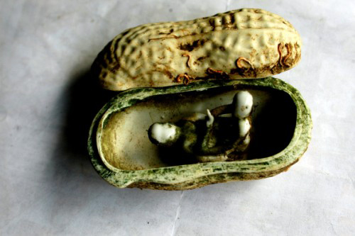 "A two-shell peanut like ""a couple embracing together"" was made in the Ming-Qing Dynasty."