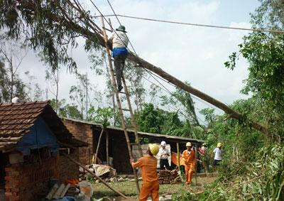 Sau bão Nari, nhiều nơi cây xanh ngã đổ gây thiệt hại cho lưới điện.Ảnh: Nhị triều
