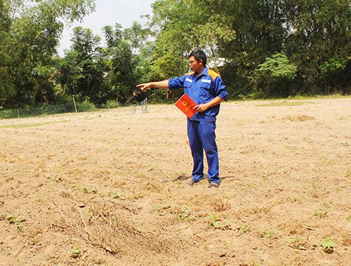 Ông Đỗ Văn Thao chỉ khu đất mà gia đình ông được cấp bìa đỏ, nhưng ông chưa được quản lý, sử dụng. Ảnh: T.T